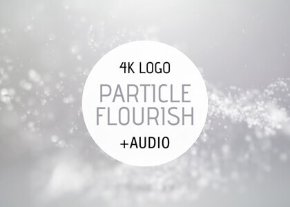 Particle Flourish After Effects intro logo reveal template