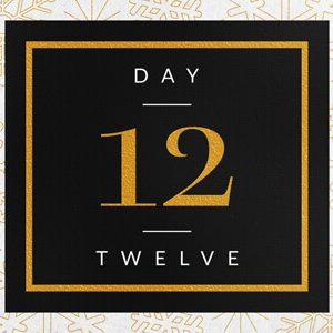 Elegant Festive Foil Calendar Number Reveal Title for Premiere THUMB